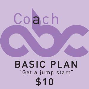 Basic-Plan-package